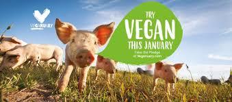 Update on Veganuary